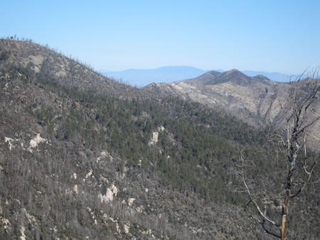 Looking N from Aspen lookout