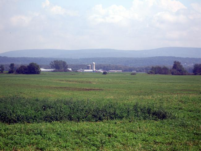 Farm E of Lake Champlain