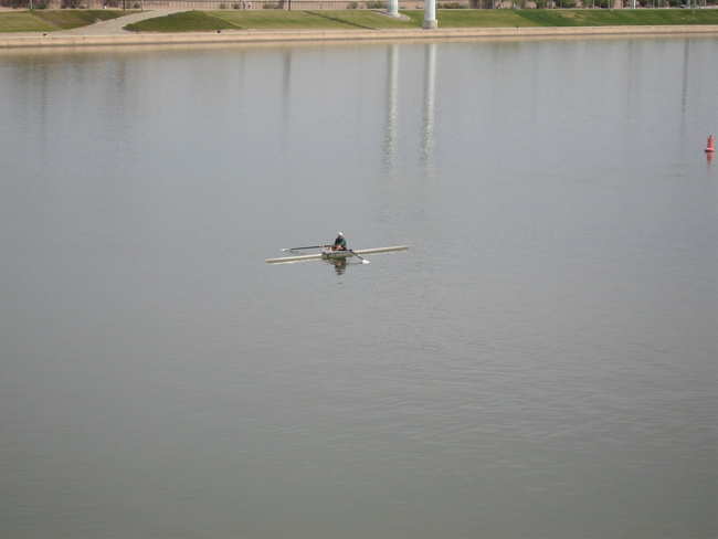 Rower on Tempe Town Lake