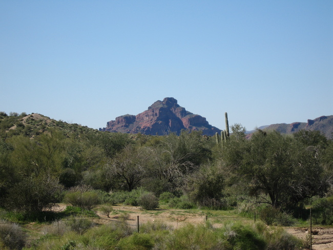 Red Mtn